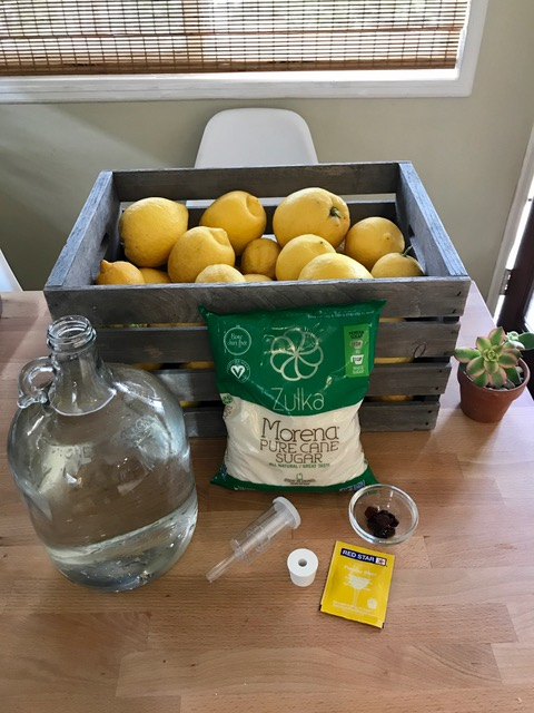 A crate of lemons, pure cane sugar, one-gallon jug, raisins, and yeast on a wooden table for a homemade lemon soda science experiment